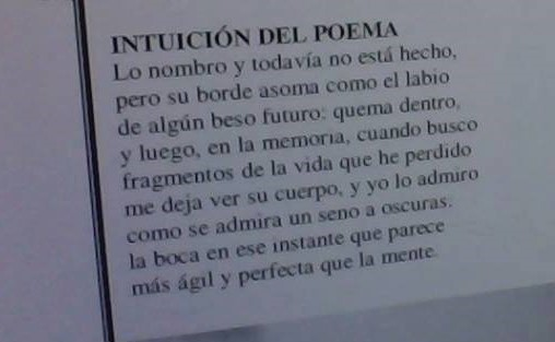 intuicion-del-poema-salvador-negro