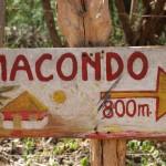 Nací en Macondo (poemario)