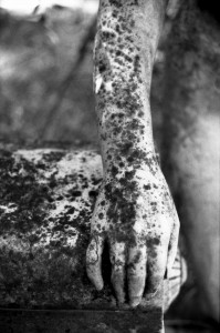 huesos de la memoria de Javier Iparraguirre 4