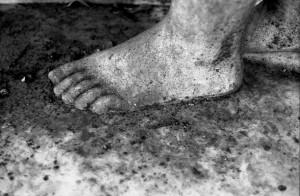 huesos de la memoria de Javier Iparraguirre 5