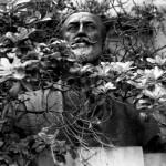 huesos de la memoria de Javier Iparraguirre 7